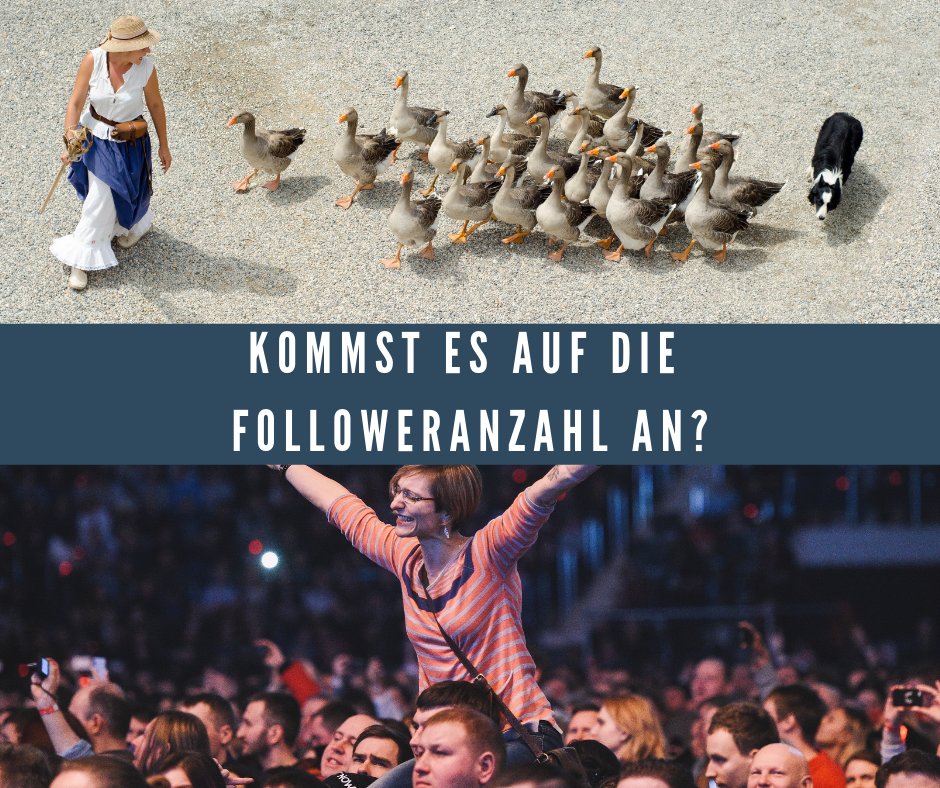 Followeranzahl